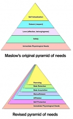 maslow_pyramid_needs-revised