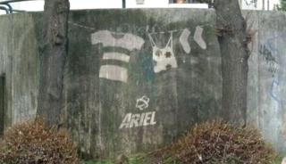 reverse-graffiti-ariel