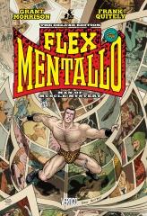 flex-1