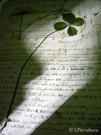 poezia-miraculosului-4-jpg