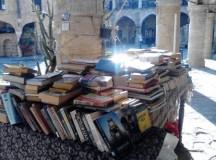 Nicosia – o poveste năpădită de tot felul