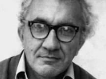 Mircea Ivănescu. Ultimul interviu
