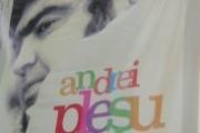 De ce îl iubim pe Andrei Pleşu