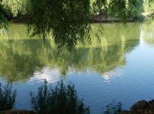 Gustul apei, în Andalucía