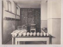 Timp și materie într-o colecție antropologică interbelică