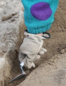 Curătarea unui complex arheologic cu truela