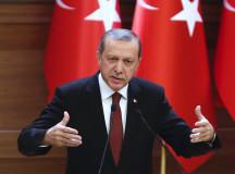 Precedentul Erdogan