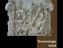INFO: Dan Negrescu – Terminologie latină. Ieri. Azi