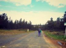 El Camino – Ce se întâmplă după final?