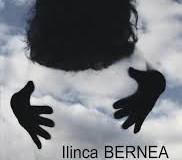 Numele tău și alte erezii – Ilinca Bernea