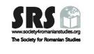 45 pentru 45*: Interviu cu Dr. Sherrill Stroschein, conferențiar universitar în științe politice la University College London