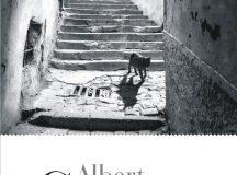 O ediţie Camus: rezistenţa
