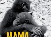Frans de Waal: Mama. Ultima îmbrățișare