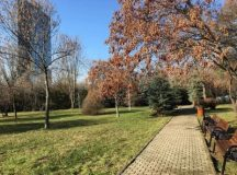 Parcul Elisabeta Rizea