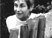 Doina Cornea, biografia regăsită